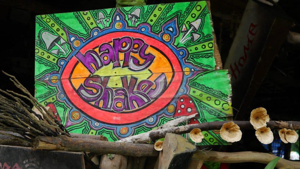 """Happy"" shakes en Tonsai"