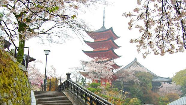 Dónde dormir en Hiroshima & Miyajima