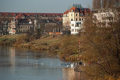 Mejores zonas donde dormir en Dresde - Pieschen