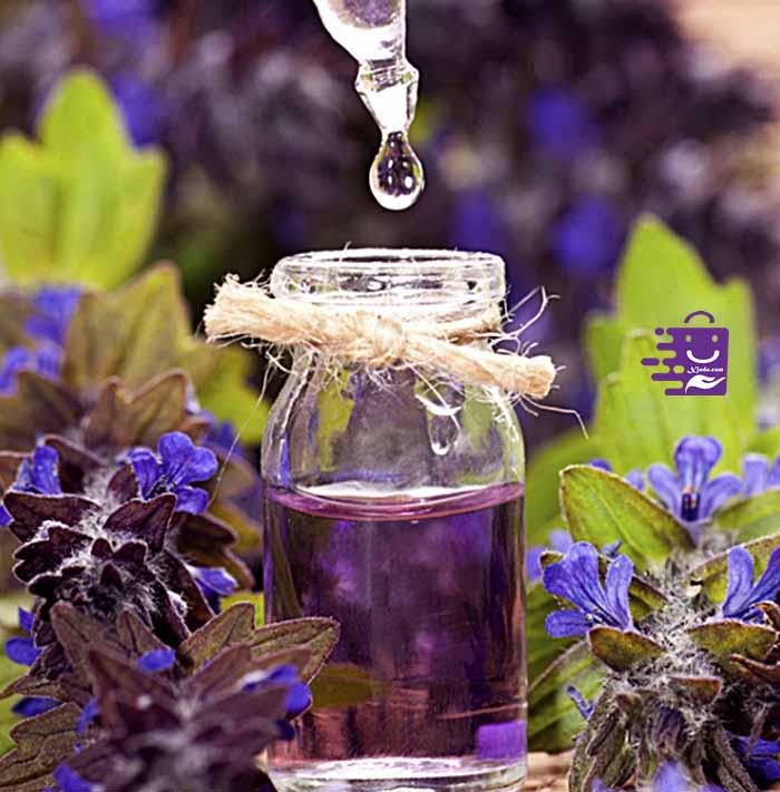 Lavender, manfaat lavender untuk kulit, manfaat bunga lavender untuk mengusir nyamuk, nama latin lavender, bunga lavender lokal, tanaman lavender palsu, bunga lavender harga,