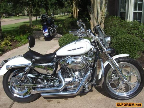 Mustang Seat 2007 Harley 883 Sportster