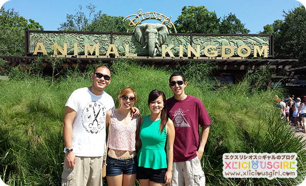 walt disney world animal kingdom