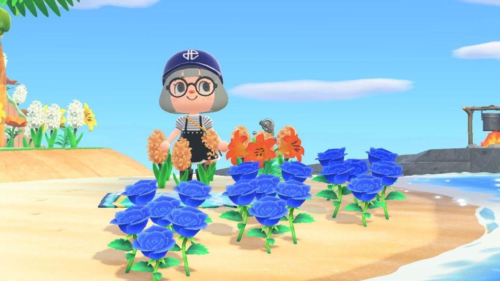 Animal Crossing New Horizon: I've Had It With Blue Roses! animal crossing new horizons blue roses