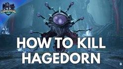 Hagedorn the Dreamer Boss Fight & Cutscene Dungeons & Dragons Dark Alliance
