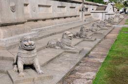 Lion crowd @ Colombo