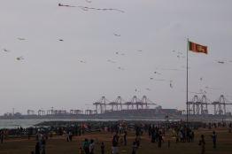 Kite season @ Colombo