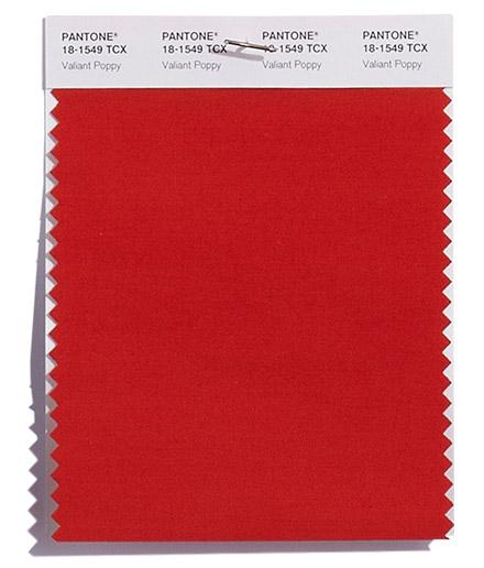 Culoarea Valiant Poppy