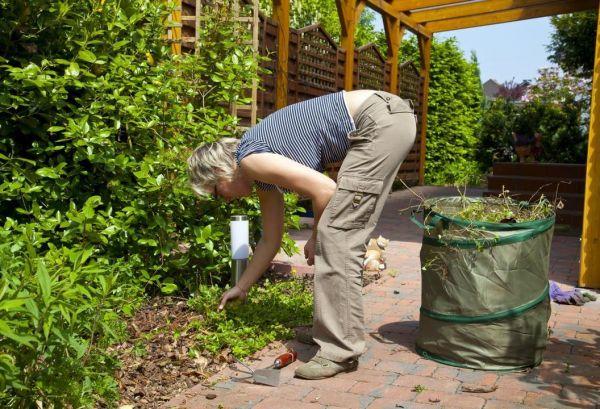 Работа в огороде без боли в спине