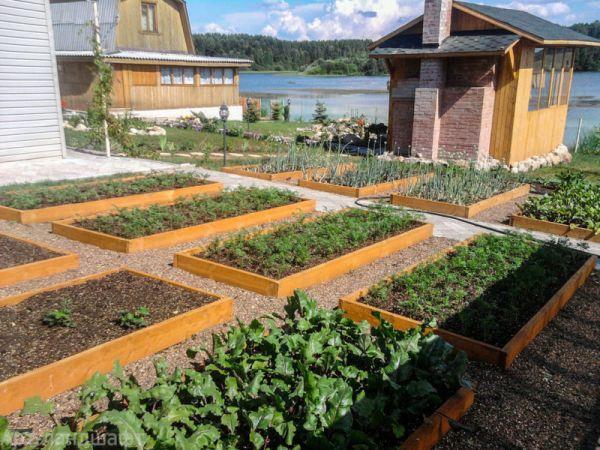 Огород, возведенный в ранг искусства. 25 декоративных огородов для вдохновения