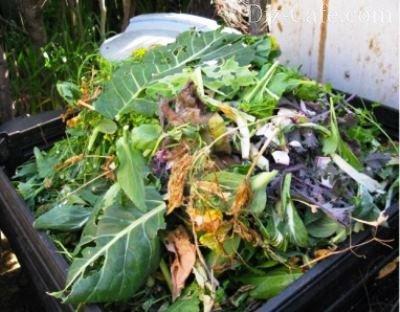 Полезный компост: правила закладки и комбинирования растительных отходов