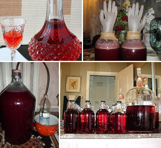 Домашнее вино из старого варенья