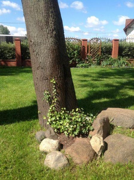 Импровизированный Gardena-парк