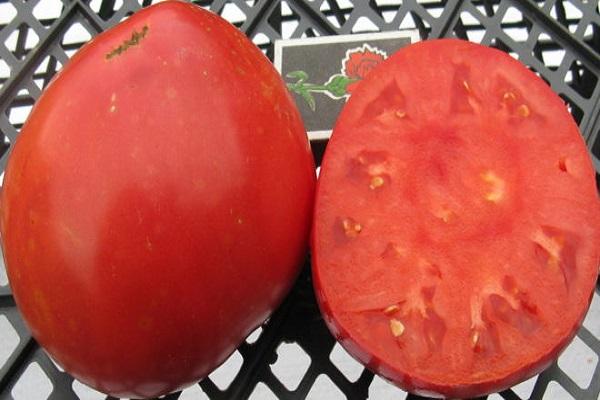 Описание сорта томата Сахар розовый, особенности выращивания и ухода