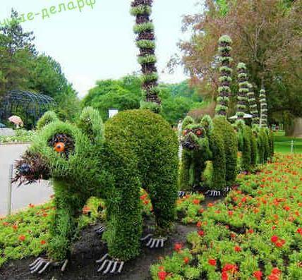 Топиарные фигуры для сада. 3