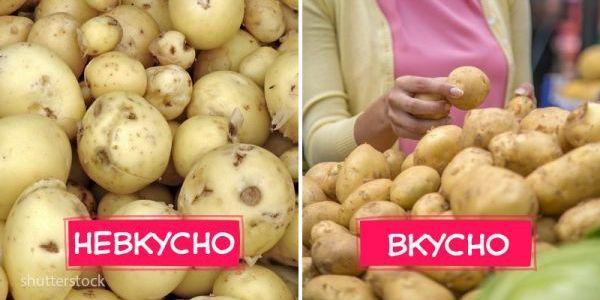 7 отличий молодой картошки, которую не надо покупать 13