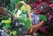 От вершка до корешка: как рационально использовать овощные отходы?
