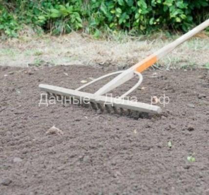 Копать или не копать: вся правда о частой перекопке почвы 4