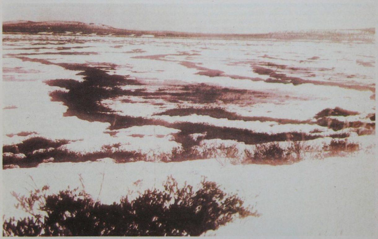 Топи Тунгуски