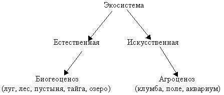 Сравнительное описание естественных природных систем и агроэкосистемы