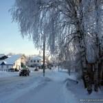 Зима в Вохме