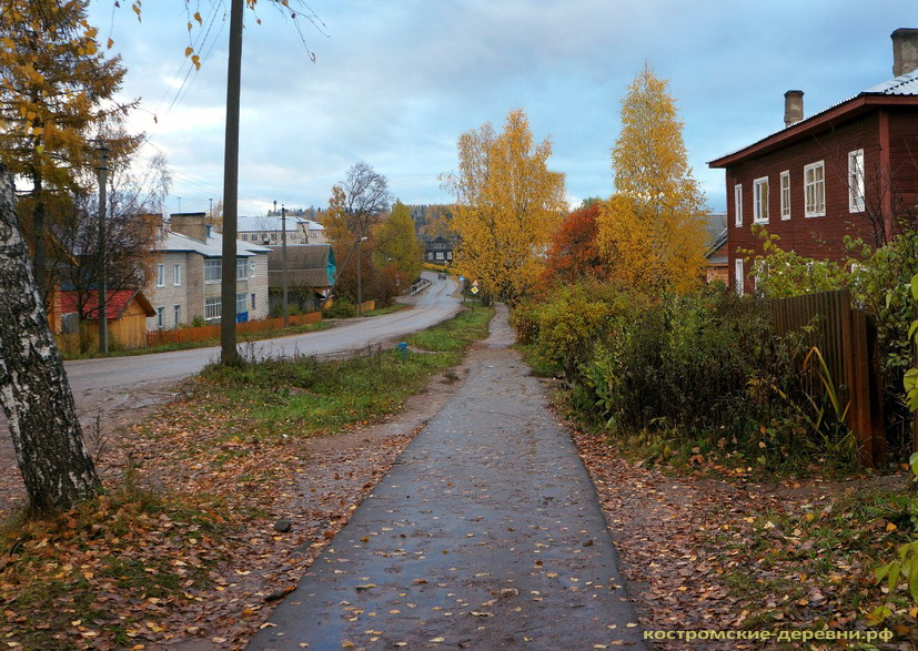 Осень в Вохме
