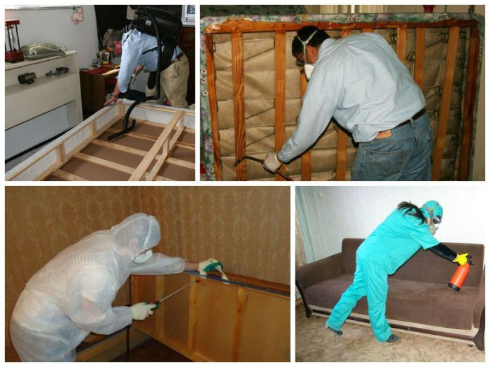Уничтожение постельных клопов в квартире в Москве