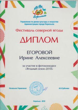Егорова И.А. 0005
