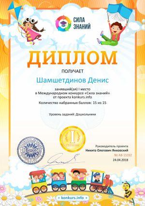 Шамшетдинов Денис 01