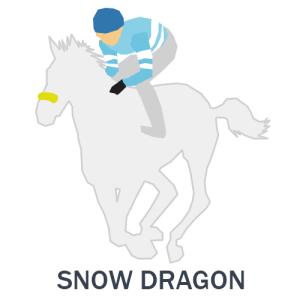 スノードラゴン