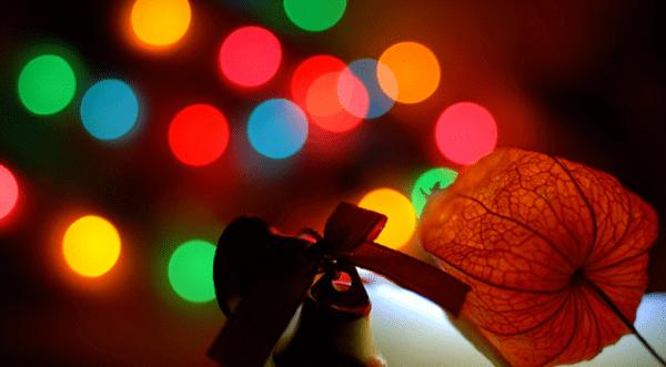 Xmas_time___Flickr_-_Photo_Sharing_