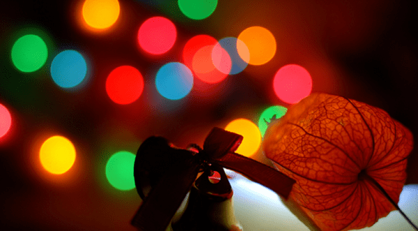 Xmas_time___Flickr_-_Photo_Sharing_
