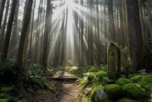 身心靈都被治癒的神奇力量。 想立刻前往!日本的七個精選能量景點。