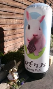 超萌療癒兔子咖啡廳