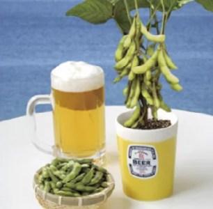 與家人喧鬧歡樂一夏☆享受假日的商品排行榜!