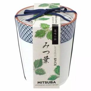 和風又時尚栽培體驗☆家庭栽培套組「青花瓷小紋佐料小鉢」