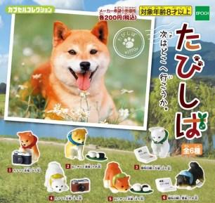 與柴犬一起旅行去♡Capsule Collection「旅柴」系列扭蛋♡共6種
