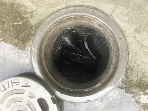 【平塚市】アパート汚水マス詰まりの除去作業を行いました。