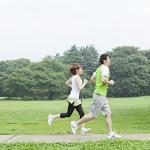 ハーフマラソン,練習,距離