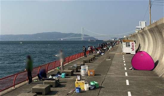平磯海釣り公園 小学生 神戸