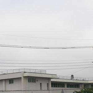 2016-08-06_07:32 空模様 宇都宮
