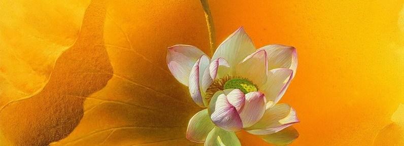 Красота одного мотива в работах Jiang Debin