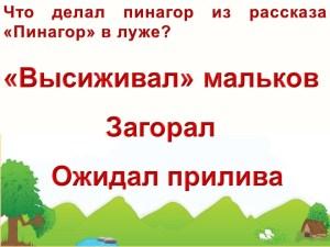 Викторина по рассказам Геннадия Снегирева