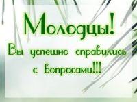 """Викторина по книге А. Смирнова """"Зачем елке иголки"""""""