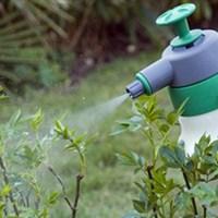 Защита растений.
