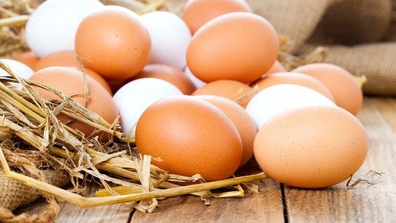 Яичный меланж цена