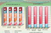 Минэкономразвития до конца ноября выпустит приказ о новой системе учета субъектов МСП