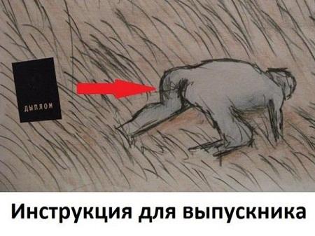 Смешные картинки прикольные для настроения с надписями.