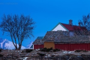 vinter nordland
