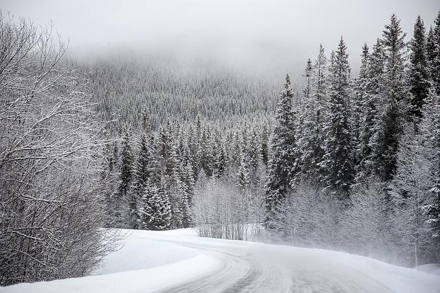 vinter trafikk vei