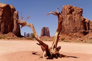 ørken usa